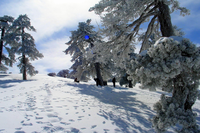 Предсказания местных синоптиков. Какая погода на острове ожидает нас зимой?