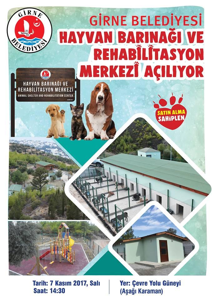 Открытие приюта в Кирении