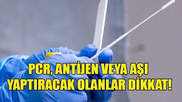 График работы лабораторий для сдачи ПЦР-тестов и на антигены