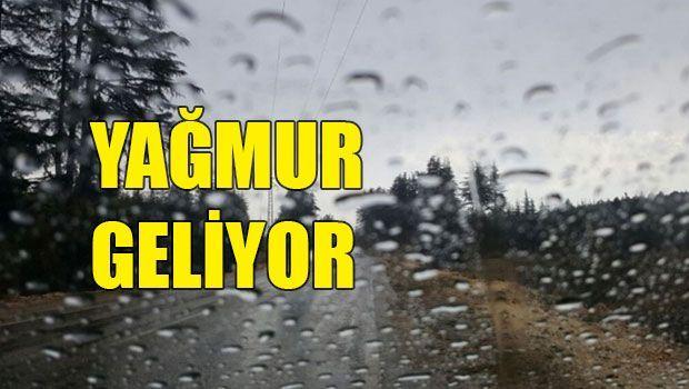 В четверг и пятницу нам обещают дожди