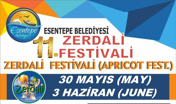 11-й фестиваль абрикосов в Эсентепе