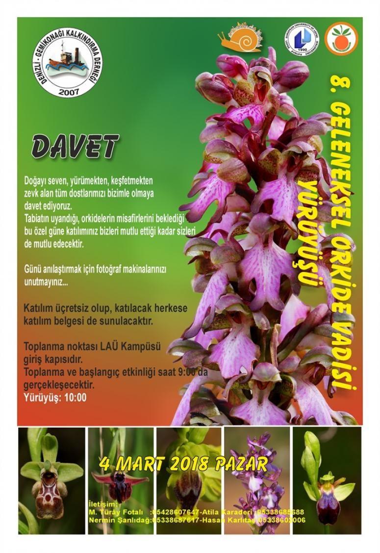 8-й поход за орхидеями в Лефке