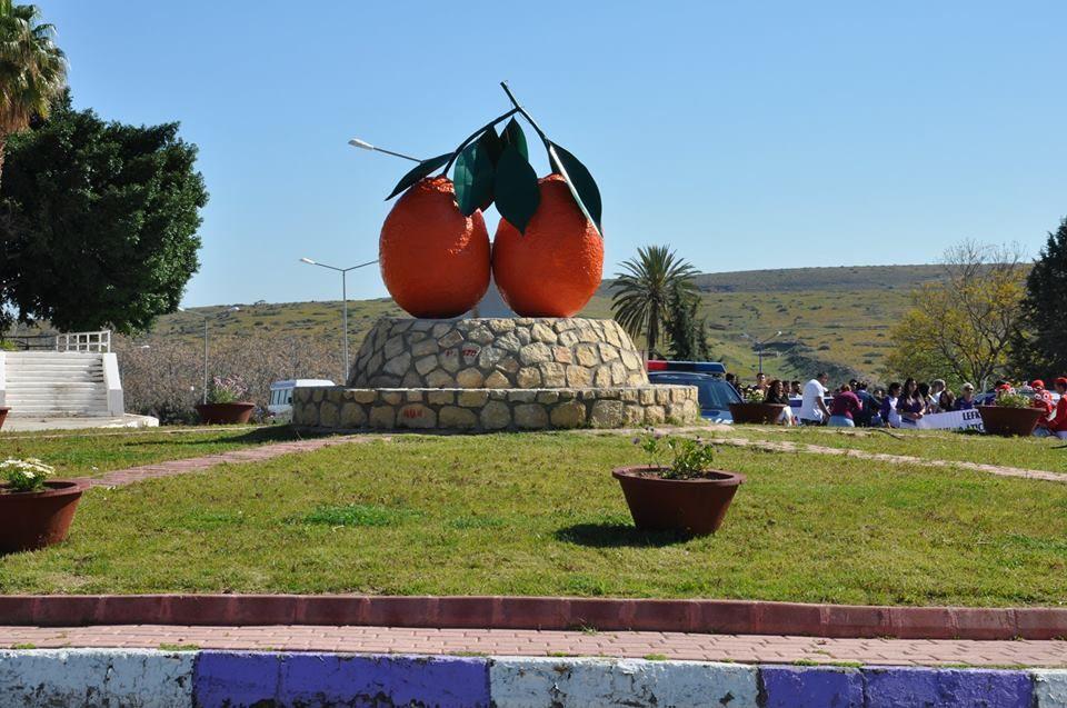 Фестиваль апельсинов Яффа