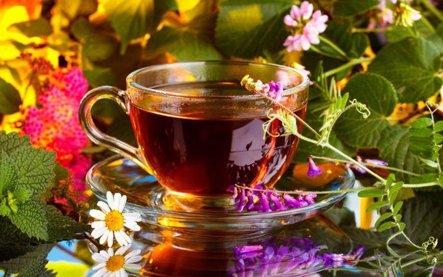Опасности, которые таят в себе травяные чаи