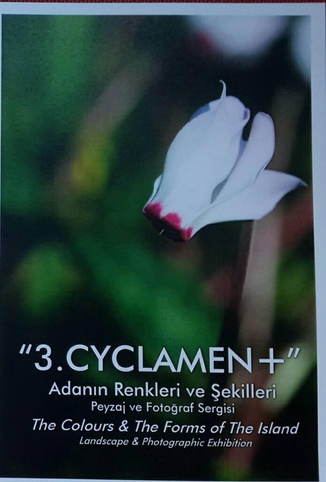 """Выставка HİKMET ULUÇAM """"3. CYCLAMEN+"""""""