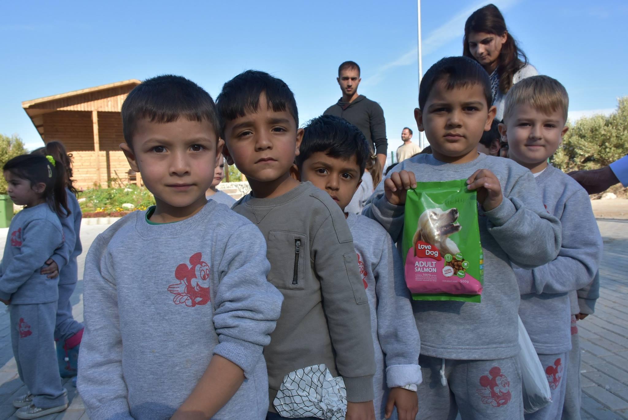 Школьники привезли еду в приют для бездомных животных