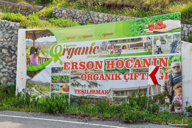 Ферма органических продуктов, отель и кафе
