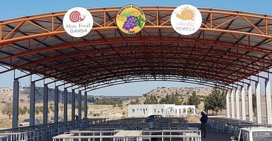 Органический рынок откроет свои двери для посетителей 5 ноября