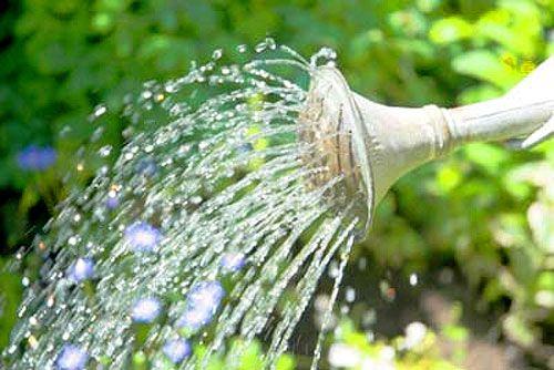 Вода из Турции все-таки дойдет до фермеров Северного Кипра