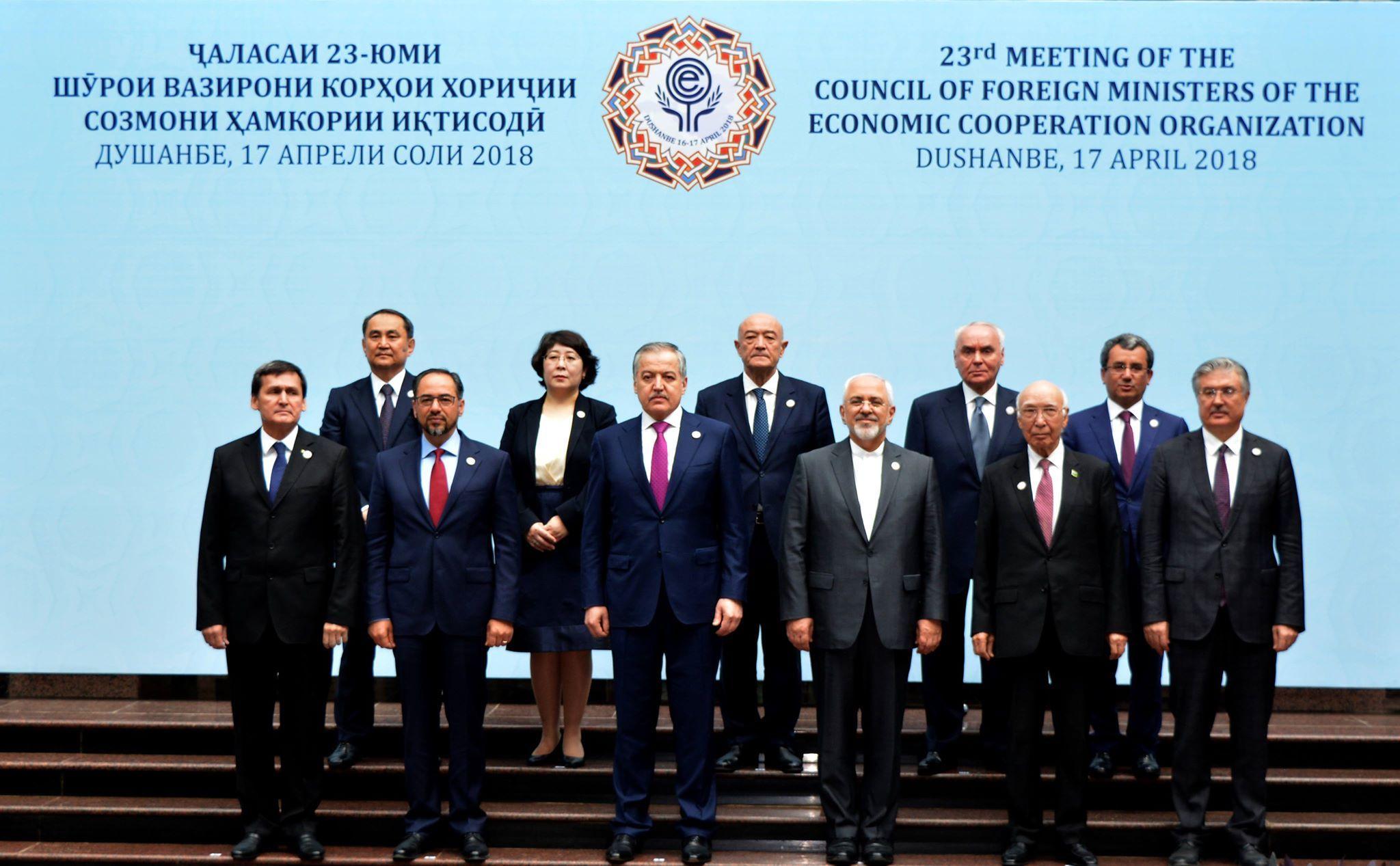 Министр иностранных дел ТРСК выступил на саммите Организации экономического сотрудничества