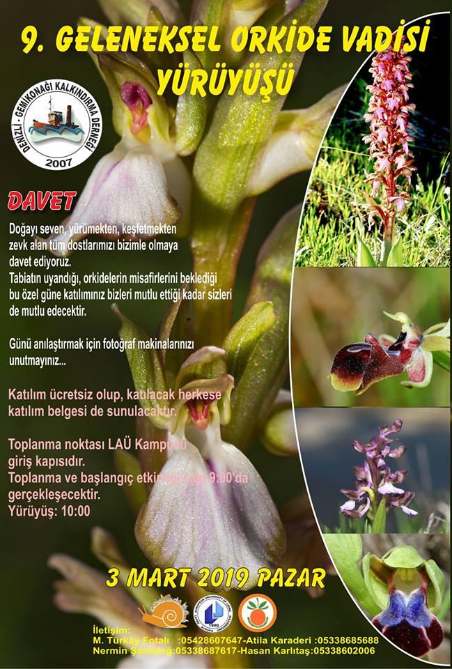 9-й поход к орхидеям в Лефке