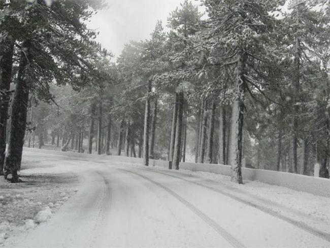 В горах Троодос выпал первый снег