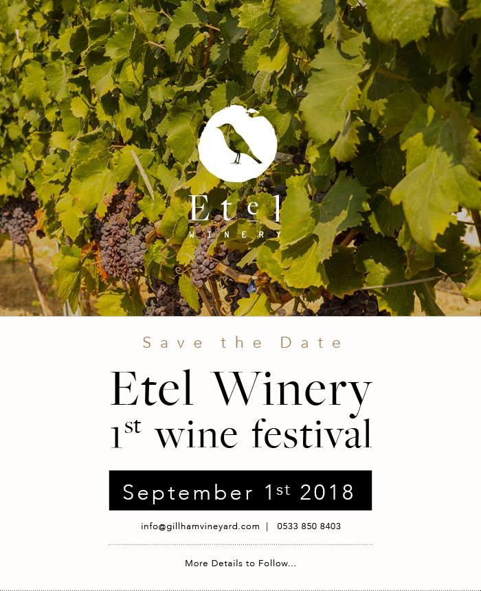 1-й фестиваль виноделия