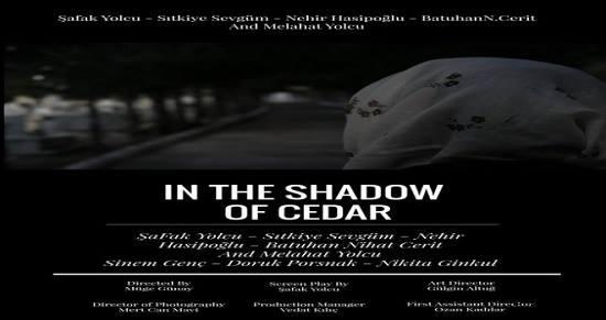 Фильм турко-киприота покажут на международных кинофестивалях