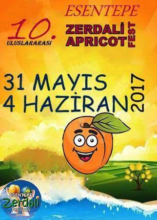 10-й фестиваль абрикосов