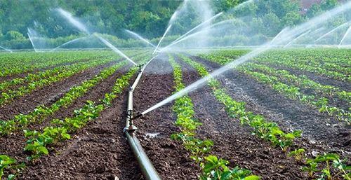Фермеры ТРСК получат воду из Турции к новому году