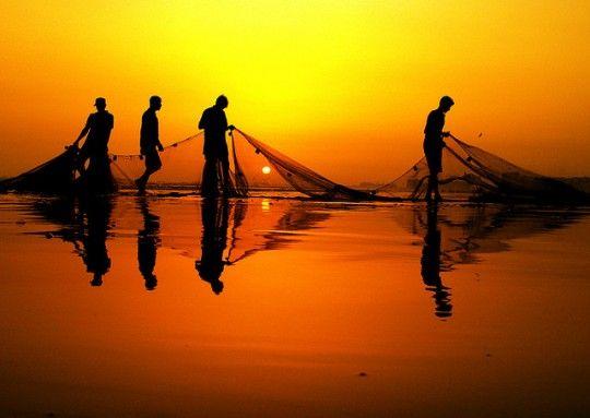 Рыбаки ТРСК получили больше 100 тысяч лир за ядовитый улов